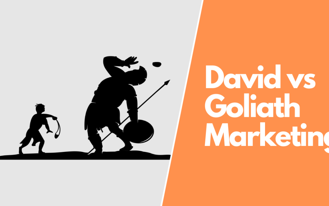Google My Business – A David and Goliath Marketing Saga